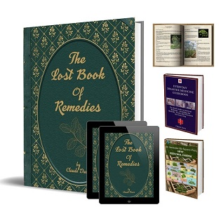 The Lost Bооk of Remedies